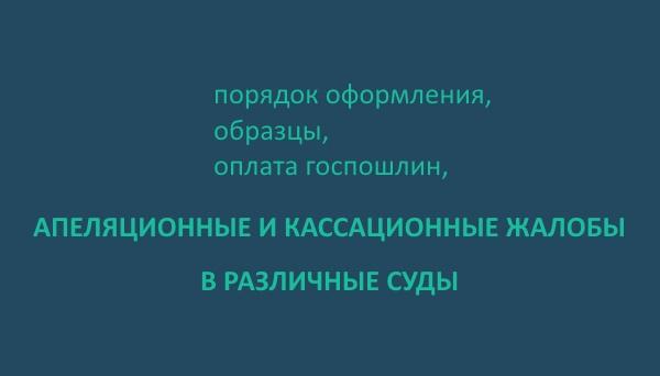 апелляционная жалоба на заочное решение районного суда образец - фото 11